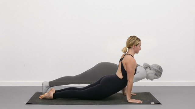 chaturanga to upward facing dog